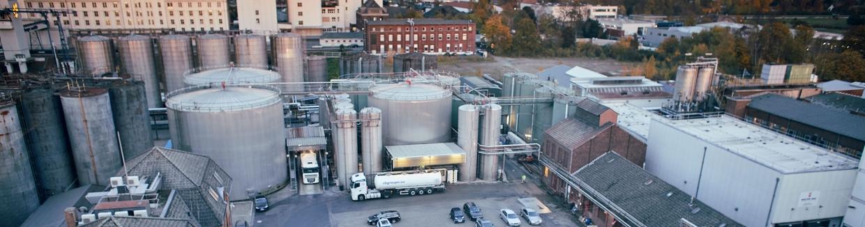 Edible oil refining process | Endress+Hauser