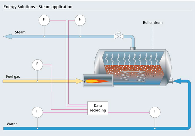 Smart scale energy solutions for steam systems | Endress+Hauser
